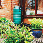 Water Works | Gather Rain for Garden Use