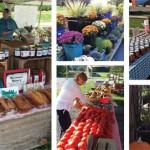 Locavore Alert | Outdoor Markets at SML